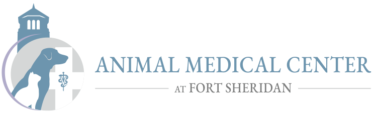 Animal Hospital in Highwood IL